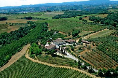 ORGANIC WINE ESTATE FOR SALE CHIANTI, TUSCANY