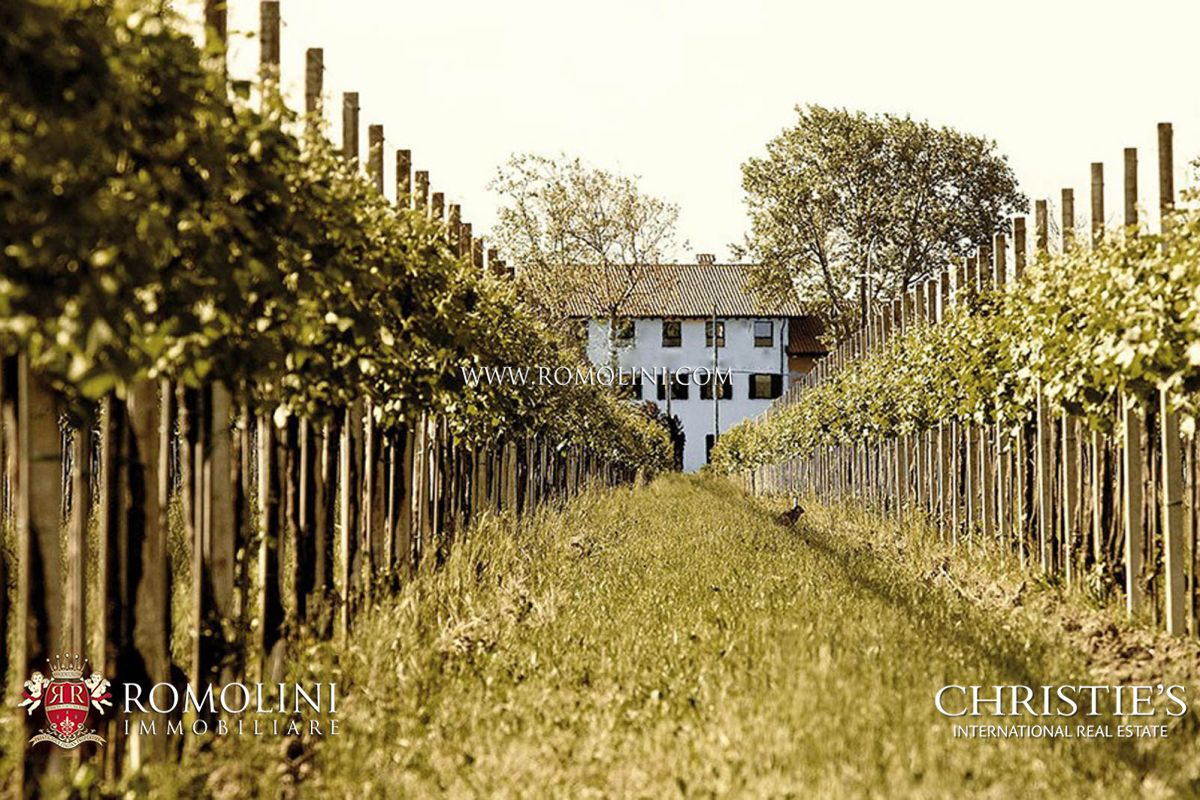 VENETO, PROSECCO WINE ESTATE FOR SALE, 93 ha of vineyards, Prosecco, sparkling wine, white and red wines