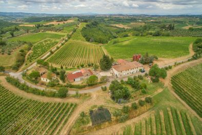 WINE ESTATE IN CHIANTI, COLLI FIORENTINI, TUSCANY, 46 ha of which 18 ha vineyard