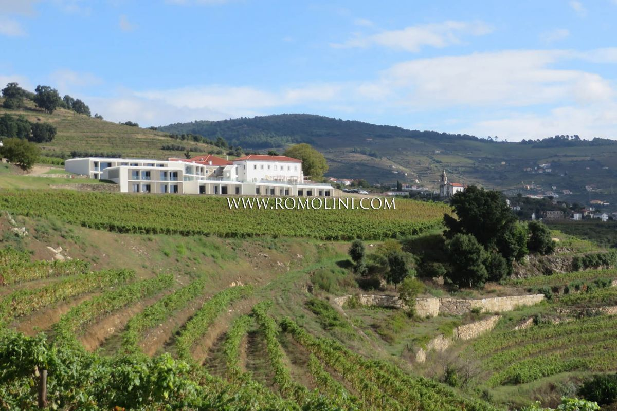 LUXURY HOTEL RESORT FOR SALE DOURO, VINEYARDS FOR SALE PORTUGAL