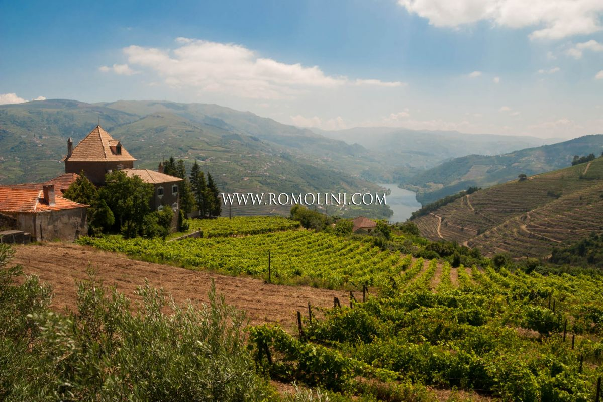 portugal property sale douro valley vineyards quinta sale maggiori dettagli e foto
