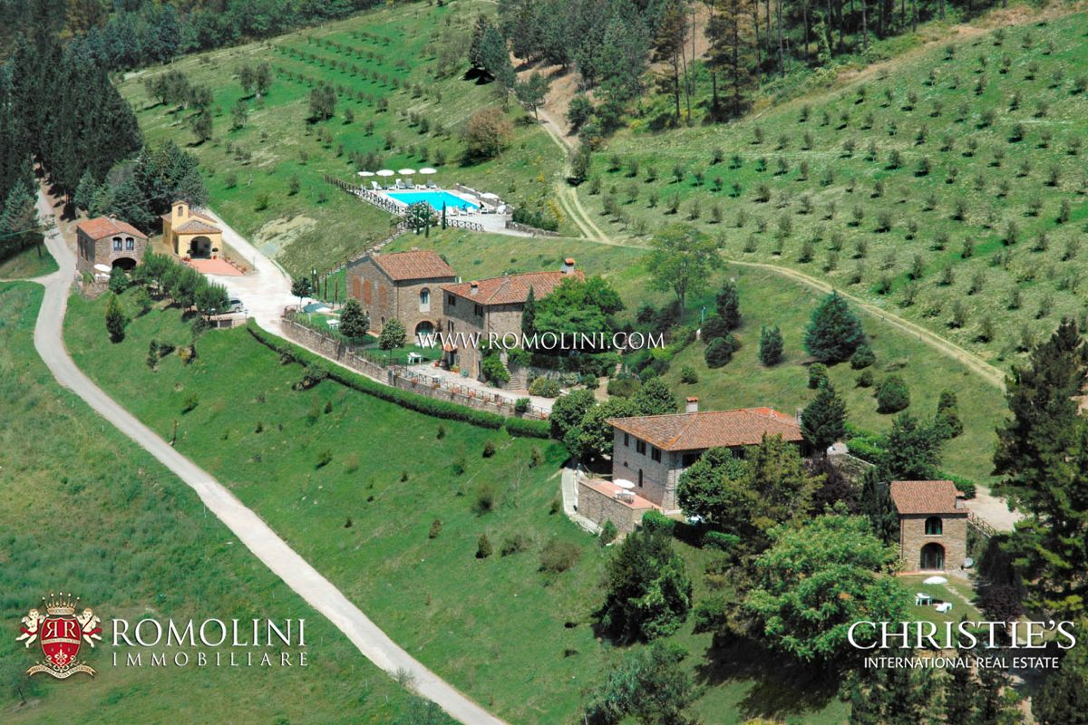 CHIANTI: ESTATE WITH WINE-CELLAR AND AGRITURISMO FOR SALE, RISERVA DI CACCIA