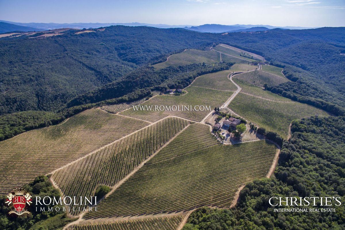 SAN GIMIGNANO: WINE ESTATE WITH 33,1 HA VINEYARD FOR SALE, TUSCANY, VERNACCIA, PINOT GRIS, CHARDONNAY, AGRITURISMO, B&B, MEDIEVAL CASTLE, RUINS