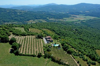 FARMHOUSE WITH PANORAMIC VIEW AND VINEYARD FOR SALE IN UMBRIA  Maggiori Dettagli e Foto
