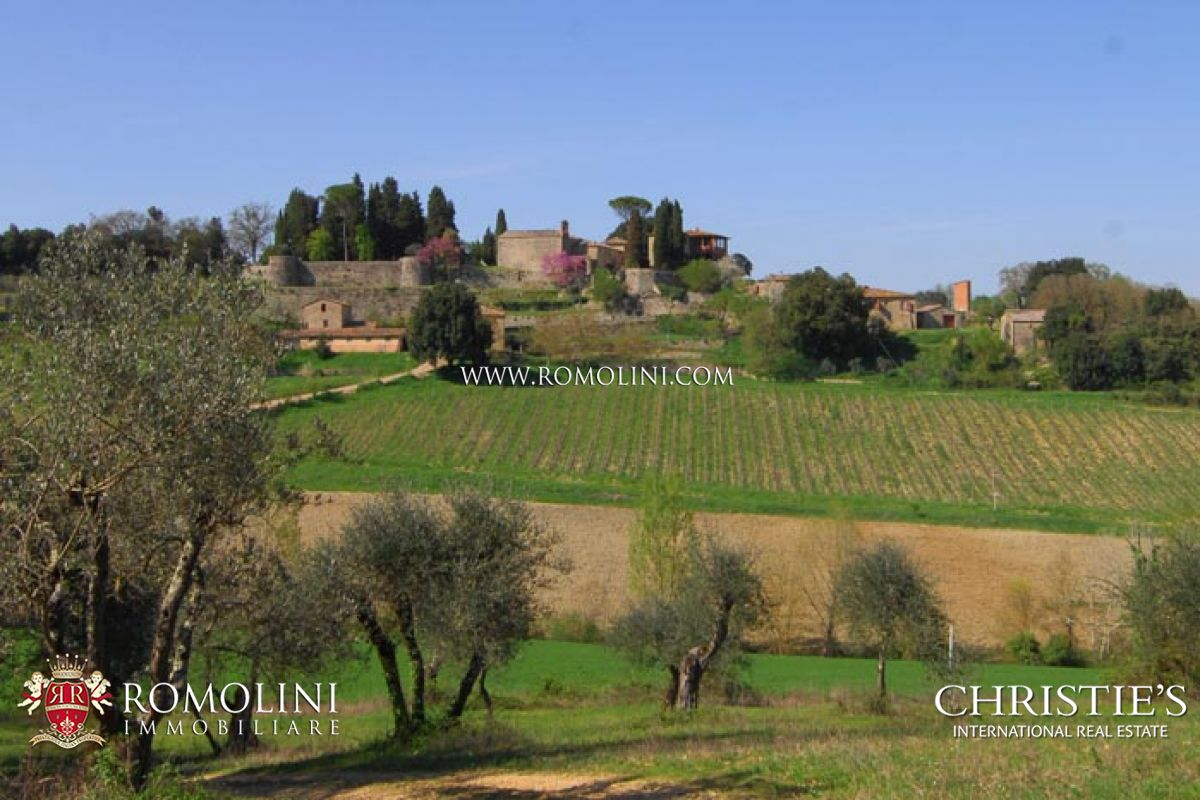 ANCIENT FARM WINE ESTATE FOR SALE SIENA TUSCANY