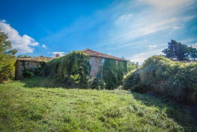 TYPICAL STONE FARMHOUSE TO BE RESTORED FOR SALE, TUSCANY  Maggiori Dettagli e Foto