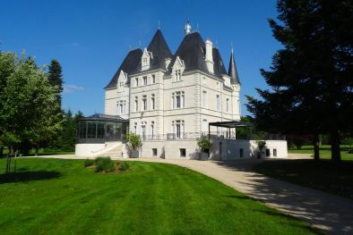 FRENCH CASTLE WITH PARK FOR SALE IN POITIERS  Maggiori Dettagli e Foto