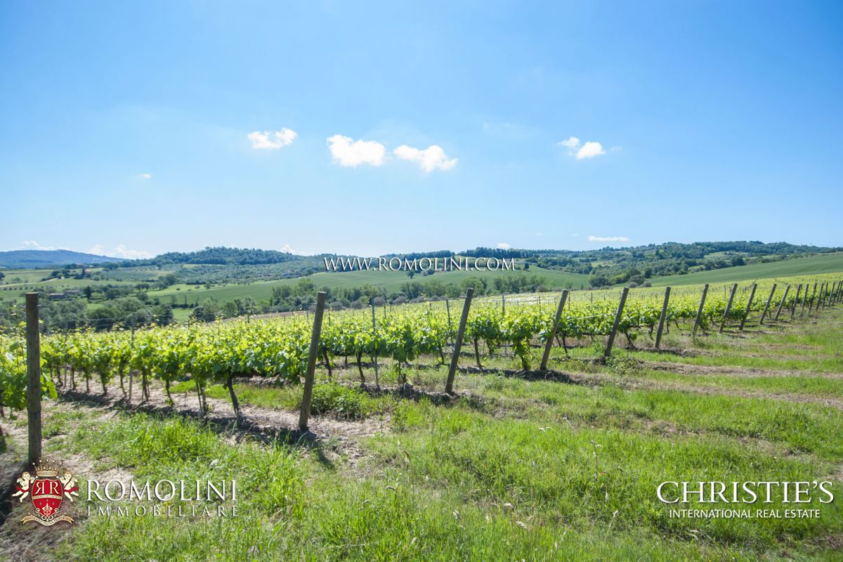 FARMSTEAD WITH 12 HA OF VINEYARD FOR SALE IN CITTÀ DELLA PIEVE | Romolini - Christie's