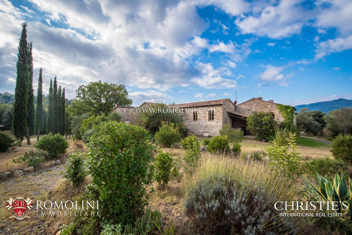 WINE ESTATE FOR SALE IN MONTALCINO, VAL D'ORCIA – 7.2 HA VINEYARDS | Romolini - Christie's