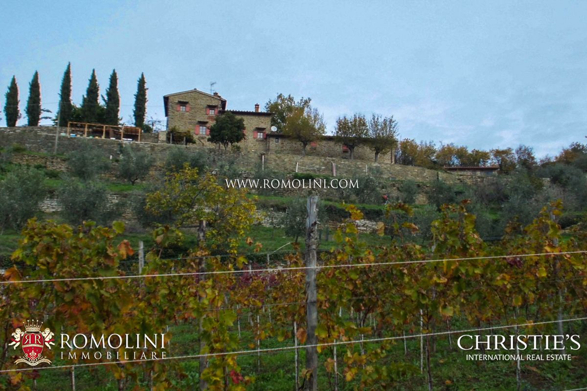ORGANIC FARM WITH VINEYARDS FOR SALE IN FLORENCE | Romolini - Christie's