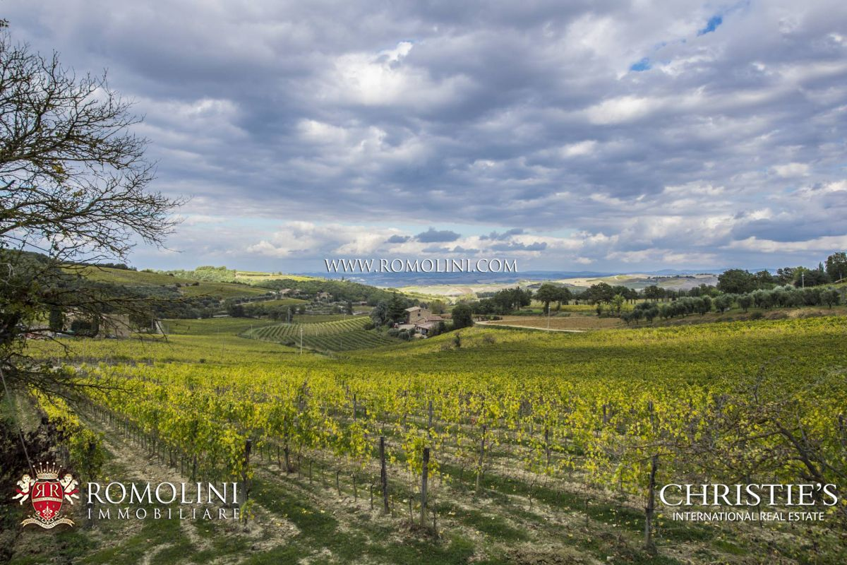 TUSCAN BRUNELLO DI MONTALCINO VINEYARDS WINERY FOR SALE. DOCG