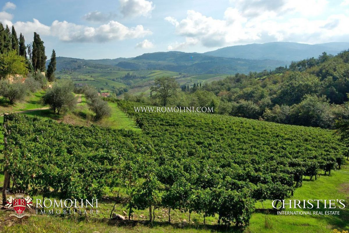 Florence Tuscany: VINEYARD CHIANTI ESTATE FOR SALE IN FLORENCE TUSCANY