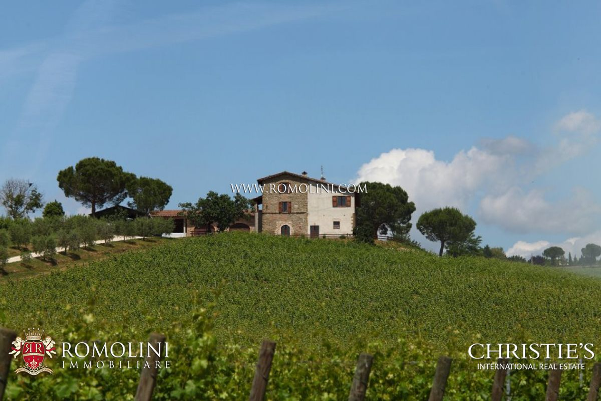 WINE ESTATE AND ORGANIC FARM FOR SALE IN PERUGIA, UMBRIA