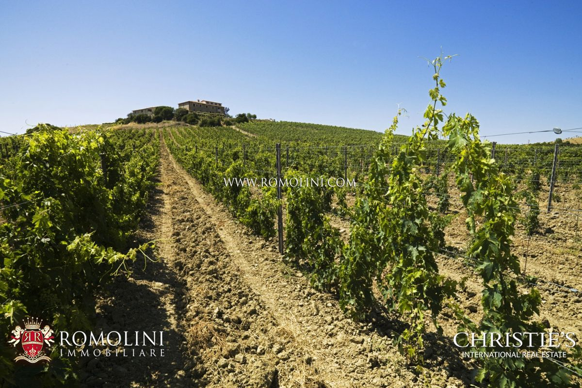 Luxury Winery Business for Sale in Tuscany – Tuscany, Maremma, Montecucco Area Agricultural businesses and Wineries TUSCANY Grosseto