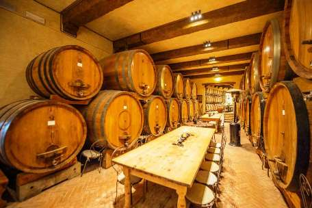 WINERIES & VINEYARDS FOR SALE - EXPERT ADVICE - TUSCANY CHIANTI, PIEDMONT BAROLO, FRANCIACORTA BOLLICINE PROSECCO, WINE REAL ESTATE PROPERTY INVESTMENT FOR SALE CHIANTI CLASSICO, FLORENCE,SIENA, BOLGHERI, BRUNELLO DI MONTALCINO, NOBILE DI MONTEPULCIA
