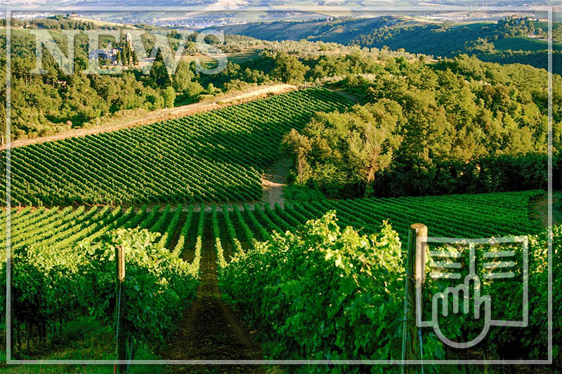 ITALY'S WINE REGIONS - A GUIDE TO TUSCANY AND UMBRIA