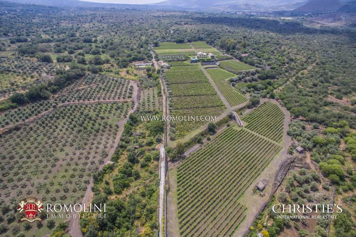 SICILIAN WINE ESTATE ETNA ROSSO FOR SALE SICILY