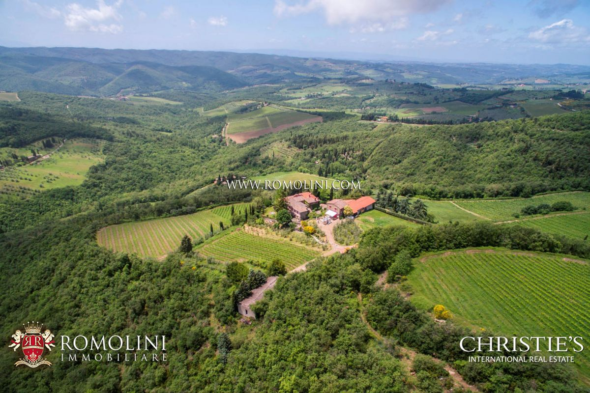MULTI-AWARD WINNING WINERY CHIANTI CLASSICO 10 HECTARES OF VINEYARDS PANZANO IN CHIANTI