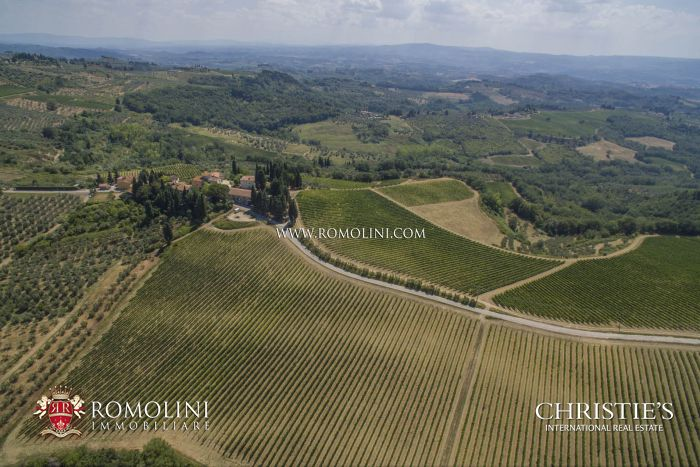 ORGANIC FARM FOR SALE MONTESPERTOLI, TUSCANY