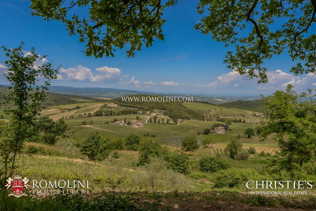VINEYARDS WINERY FOR SALE BRUNELLO DI MONTALCINO WINE