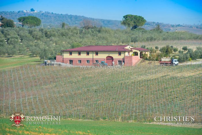 MORELLINO DI SCANSANO: 10 HA PRESTIGIOUS WINE CELLAR FOR SALE
