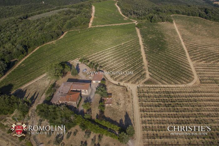 SAN GIMIGNANO: WINE ESTATE WITH 33.1 HA VINEYARD FOR SALE