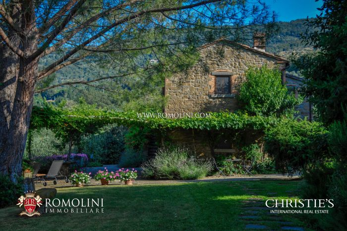 TYPICAL TUSCAN FARMHOUSE WITH POOL AND VINEYARD FOR SALE, CORTONA