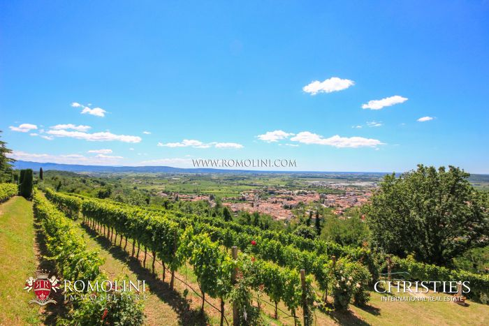 ESTATE WITH VINEYARD FOR SALE IN GORIZIA, FRIULI-VENEZIA GIULIA