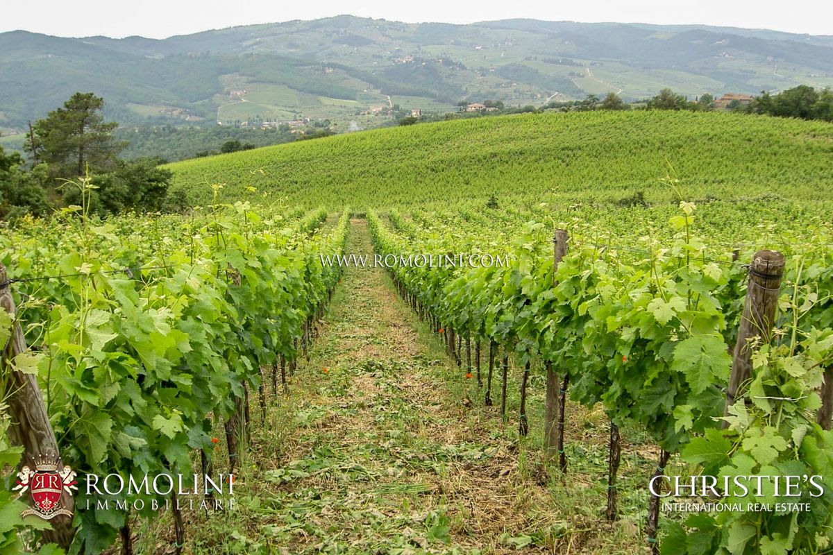 WINERY FOR SALE CHIANTI CLASSICO, 15 HA VINEYARD | Romolini - Christie's
