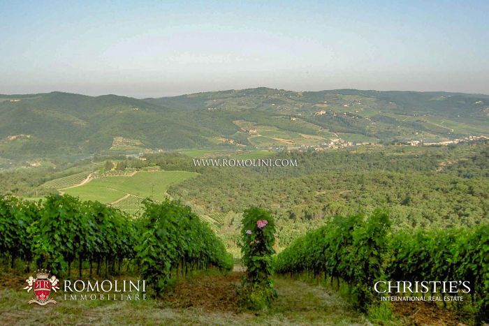 RENOWNED WINERY FOR SALE IN CHIANTI CLASSICO