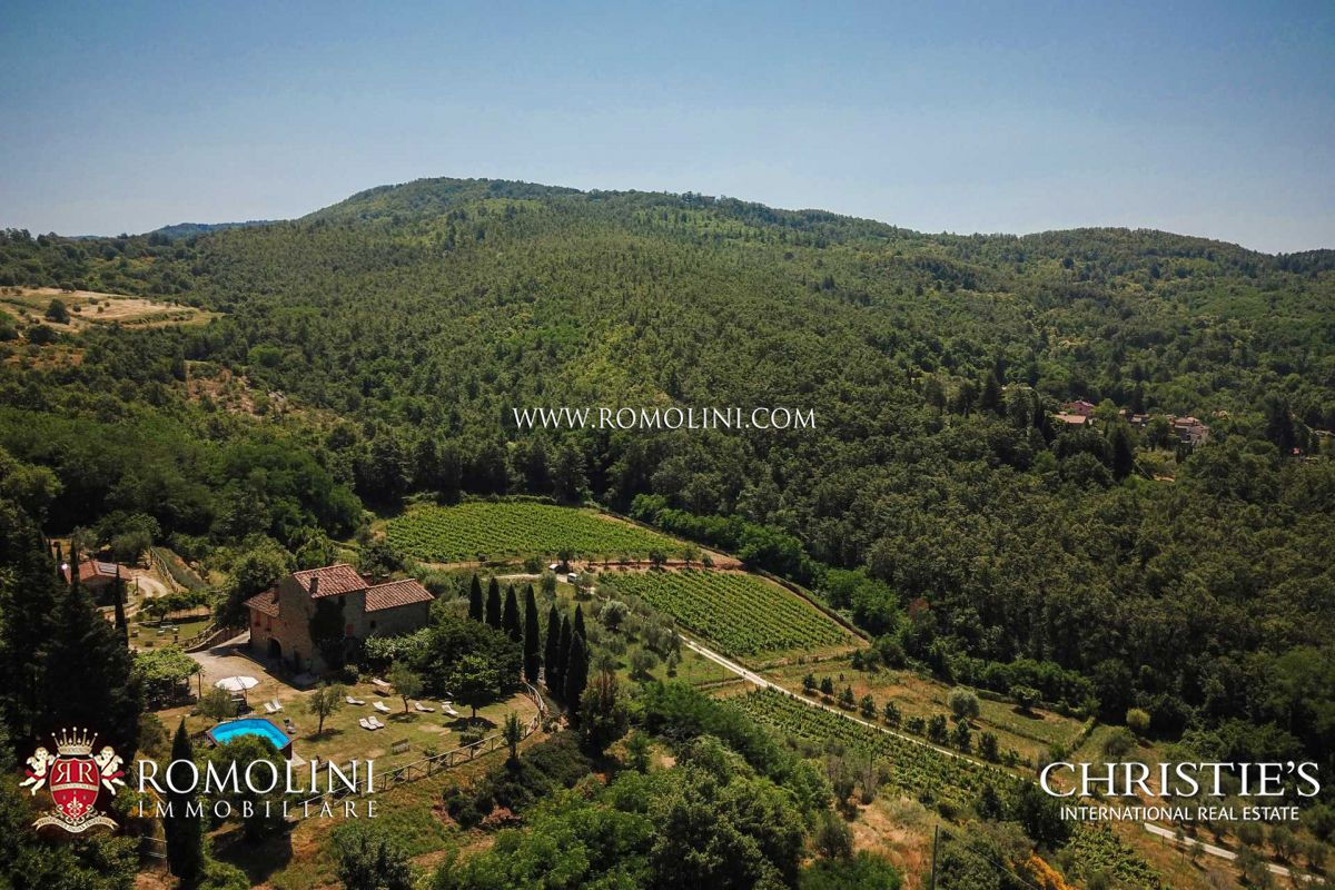 ORGANIC FARM WITH IGT HOBBY VINEYARDS FOR SALE IN TUSCANY | Romolini - Christie's
