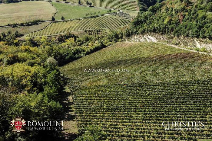 AWARD-WINNING BOUTIQUE WINERY FOR SALE IN EMILIA-ROMAGNA, ITALY