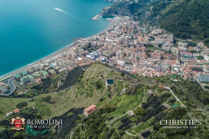 22-HA ORGANIC VINEYARDS AND WINERY FOR SALE AMALFI COAST