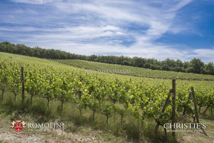 AWARD-WINNING WINERY WITH ORGANIC VINEYARDS FOR SALE, CHIANTI CLASSICO