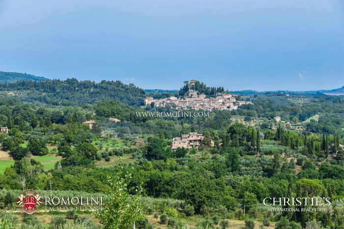 TUSCAN ESTATE WITH VILLA AND OLIVE GROVE FOR SALE IN CETONA