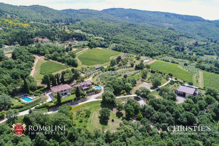 GREEN WINERY FOR SALE TUSCANY, BIO ORGANIC VINEYARDS