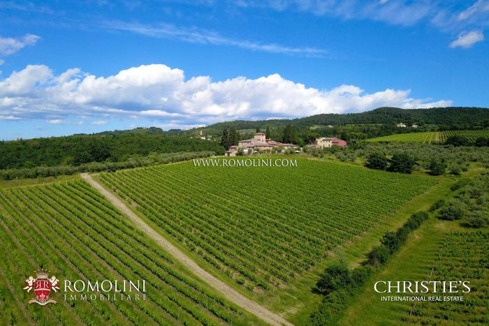 WINERY VINEYARDS FOR SALE TUSCANY, CHIANTI CLASSICO