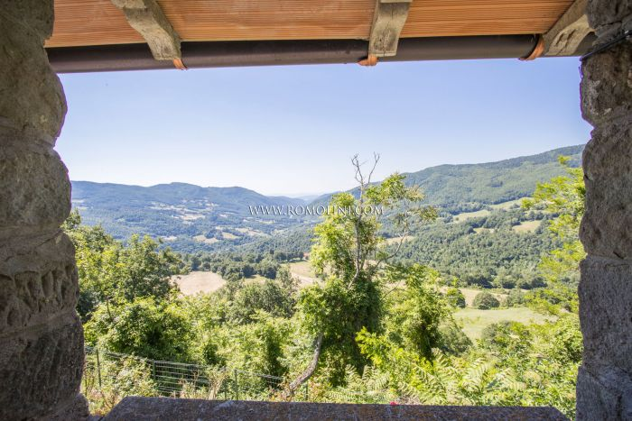 RUSTIC STONEHOUSE FOR SALE IN PIEVE SANTO STEFANO, TUSCANY