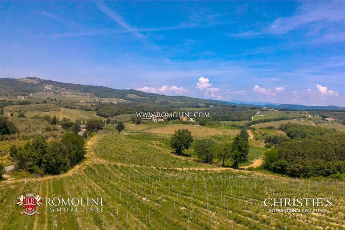 WINE ESTATE WITH 82 HA OF VINEYARDS FOR SALE IN CHIANTI CLASSICO, TUSCANY