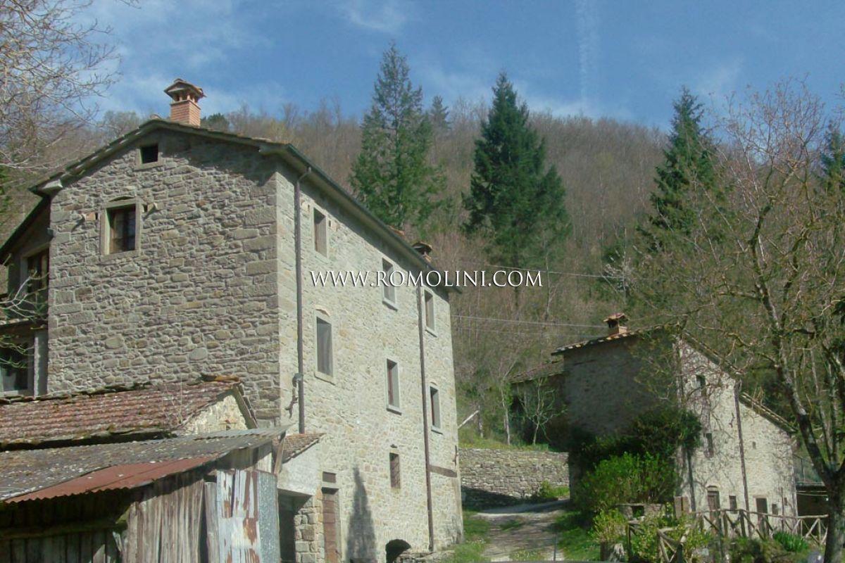 Old Mill For Sale Garden Annexes Caprese Michelangelo
