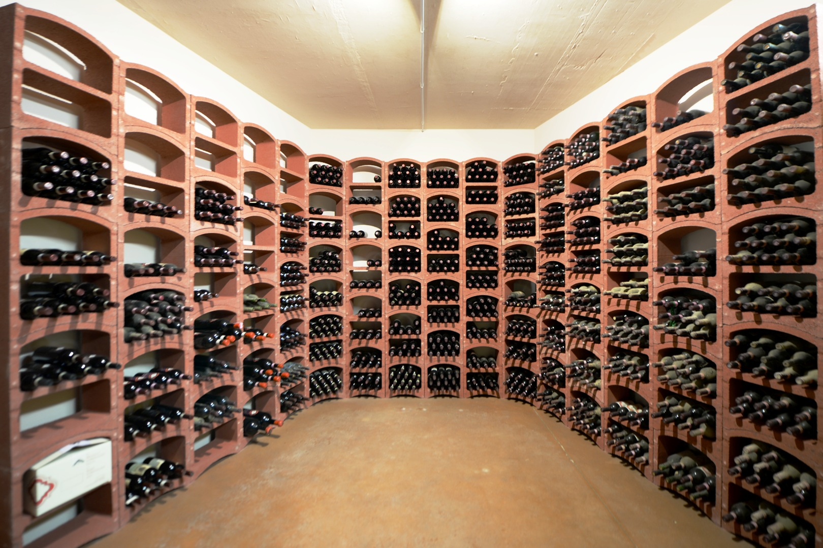 Cellar / Vineyard