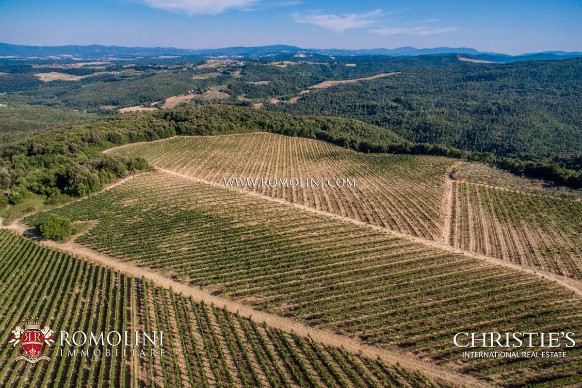 VINEYARDS FOR SALE IN ITALY - CHIANTI CLASSICO, MONTALCINO, BOLGHERI